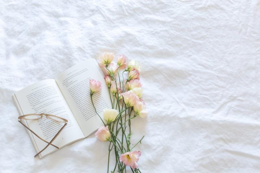 Festa edi libri con Una Montagna di Libri a Cortina
