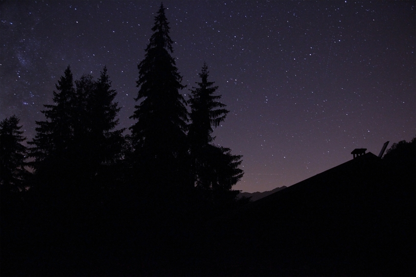 A starry sky over a wood in the Dolomites