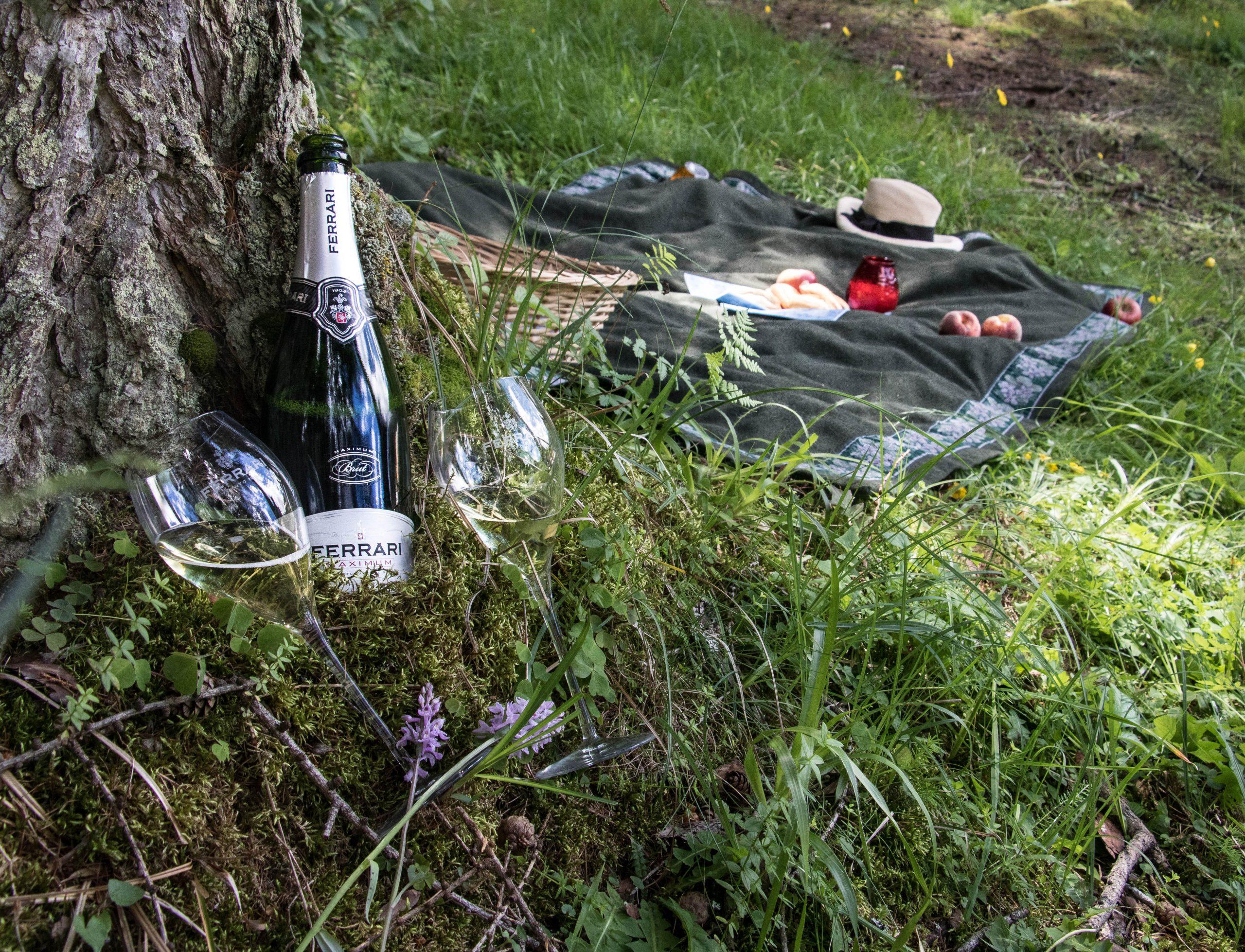 Un picnic su un prato delle Dolomiti per Pasqua 2019